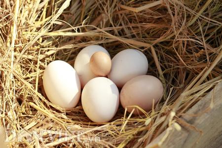 Bí quyết ăn trứng gà đúng cách