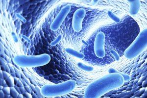 Lạm dụng kháng sinh gây bệnh