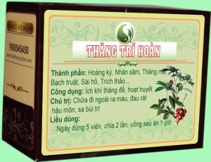 Thăng trĩ hoàn phòng khám Đông y Nguyễn Hữu Toàn